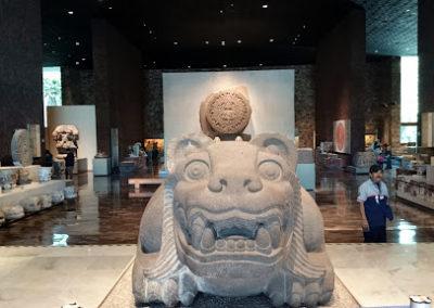 iboga retreat mexico museum