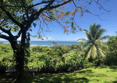 iboga retreat center in Costa Rica